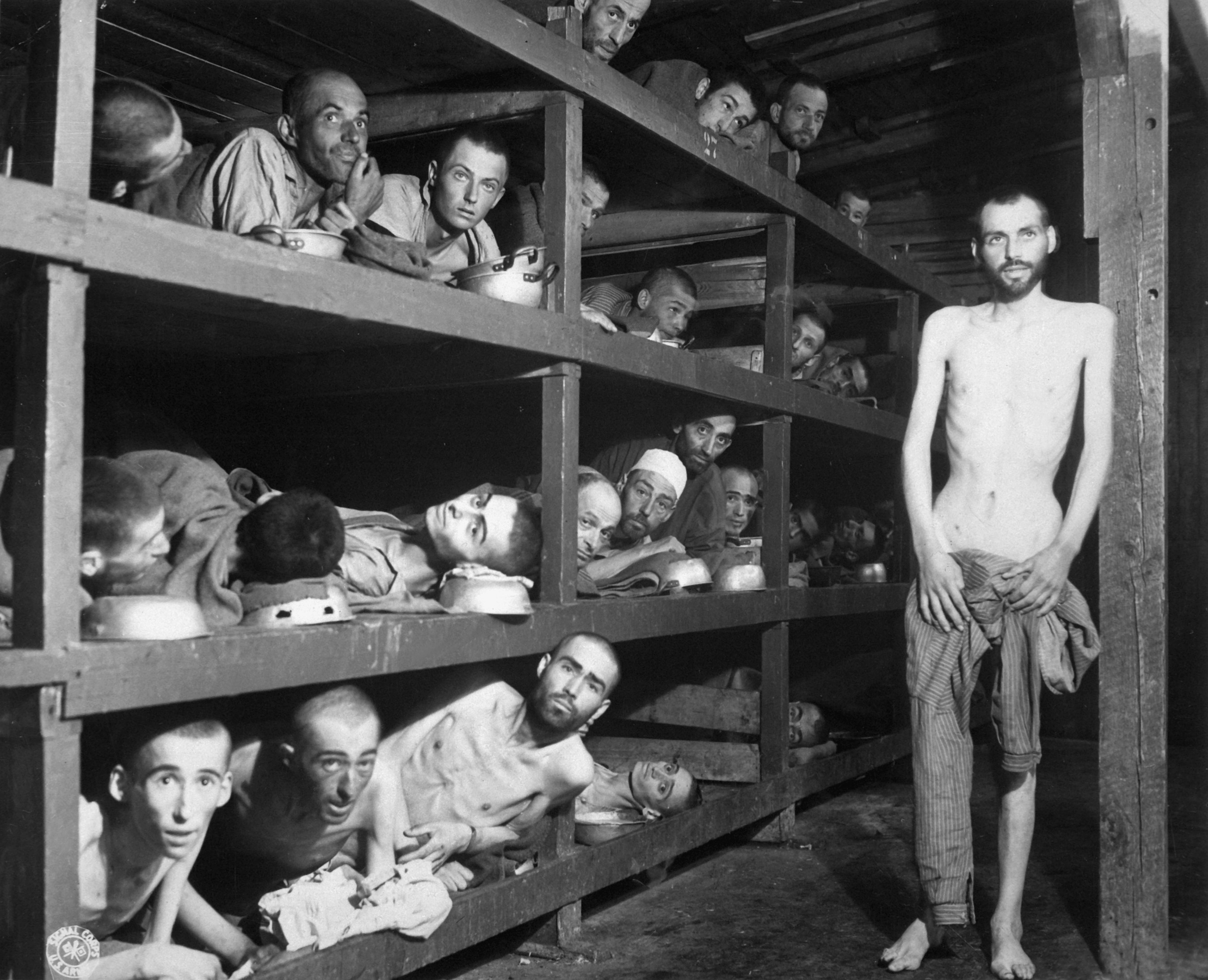 holocaust a result of institutional or functionalist policy of germany Joshua murgatroyd assess the view that the holocaust was the result of a the other main school is the functionalist view assess the view that the holocaust.